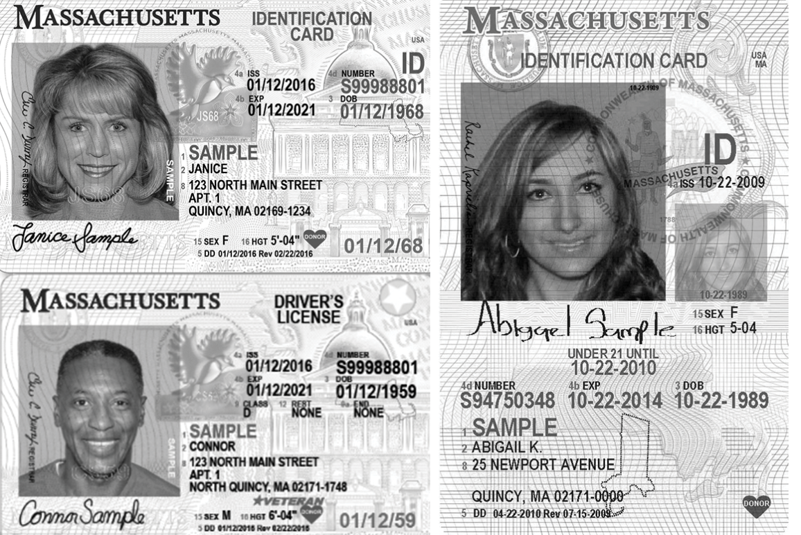 Collage of Massachusetts state IDs