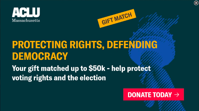 Protecting Rights, Defending Democracy
